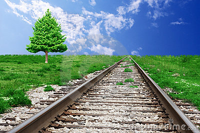 albero-di-pino-e-della-ferrovia-5199230
